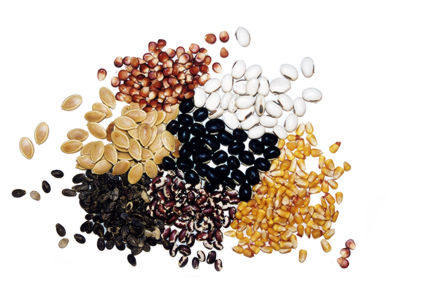 Captivating How To Save Seeds