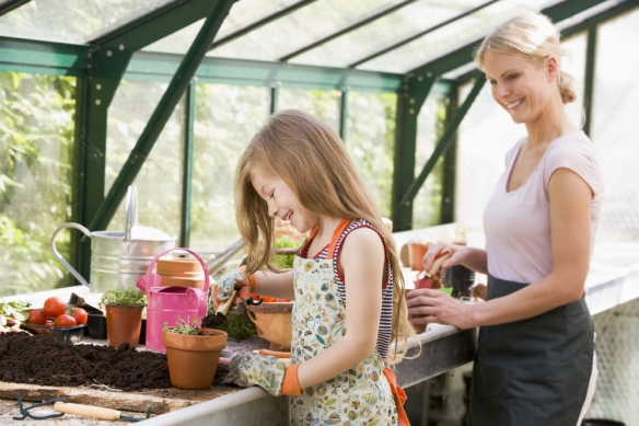 Handling the Planting of Flowers Classified as Impatient2