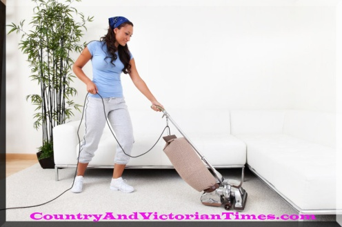 Cleaning home with minimum efforts2